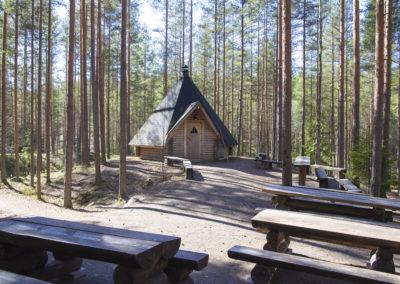 Mäntypuiden keskellä kota jonka edustalla hirsipuupöytiä.