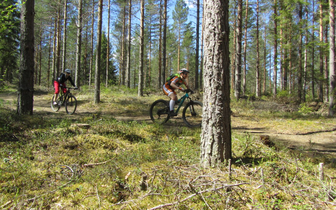 Kaksi maastopöyöräilijää metsässä.