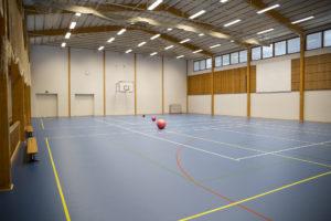 Liikuntahallissa sininen lattia, kolme palloa ja koripallokori.