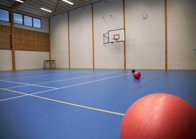 Liikuntahallissa sininen lattia, palloja, maali ja koripallokori seinällä.