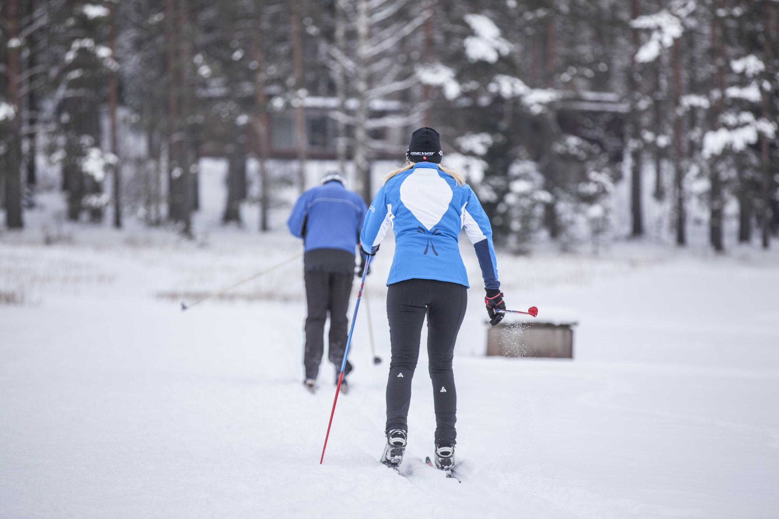 Kaksi hiihtäjää peltoladulla.